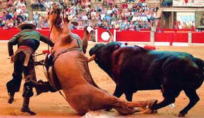 horse%20gored.jpg